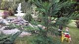 Apartmány Šarlota - upravená záhrada